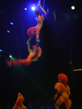 Acrobatics at Festival of the Lion King