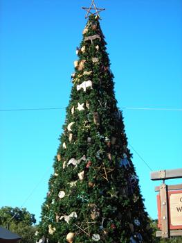 Christmas Tree at Animal Kingdom