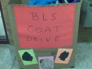 Goat Drive